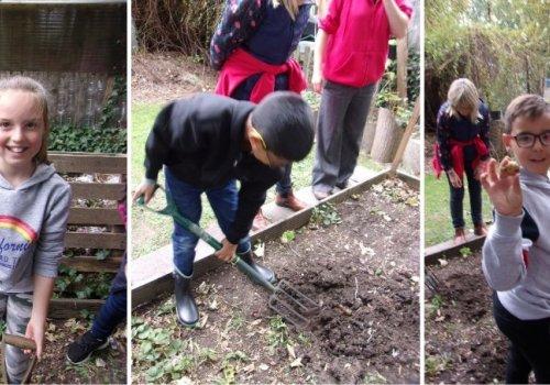 Hillborough Housekeeping Enrichment activity